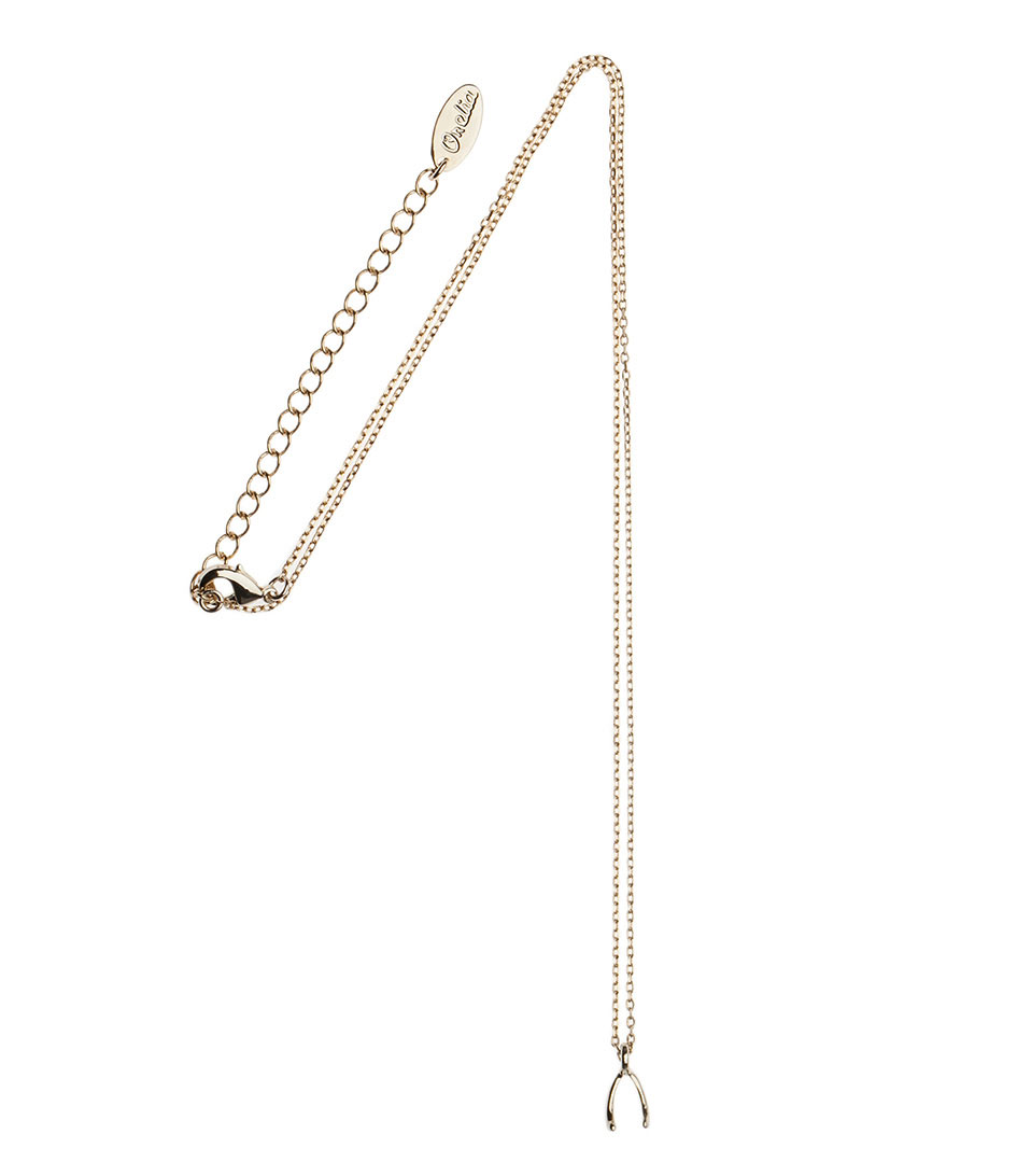 Orelia Kettingen Wishbone Necklace