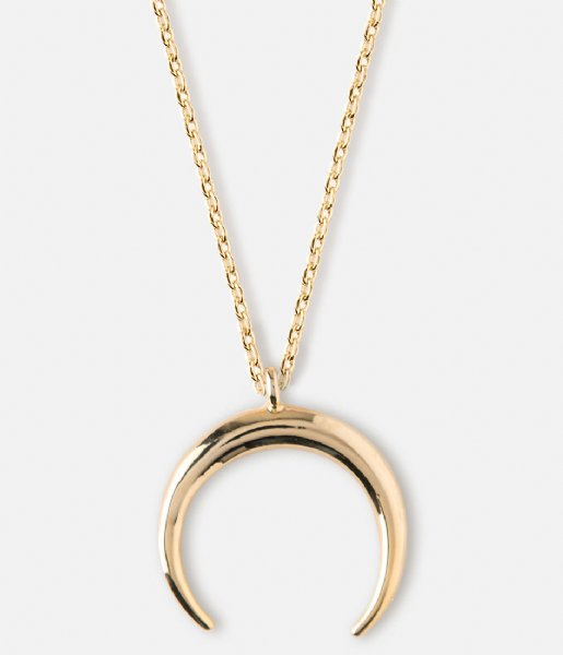 Orelia Ketting Crescent Ditsy Necklace gold plated (ORE23096)