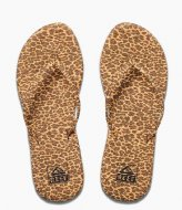 Reef Bliss Summer cheetah